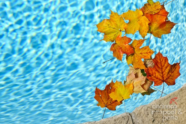 fall pool maintenance